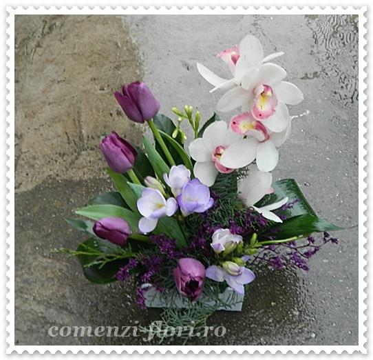 Aranjamente Flori De Primavarafreziilalele Cosuri Flori Buchete
